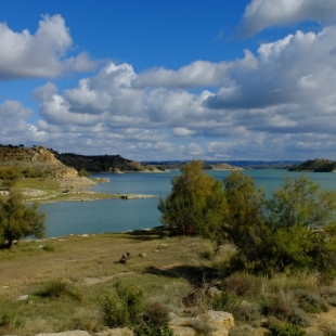 Fotogalerie Camp Ebro River Ebro is looking forward to your visit